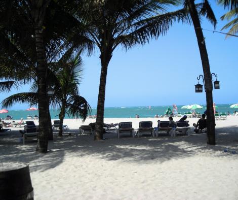 République dominicaine soleil palmier voyage caraïbes